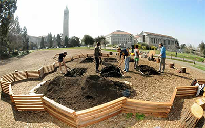 students gardening on UC Berkeley campus
