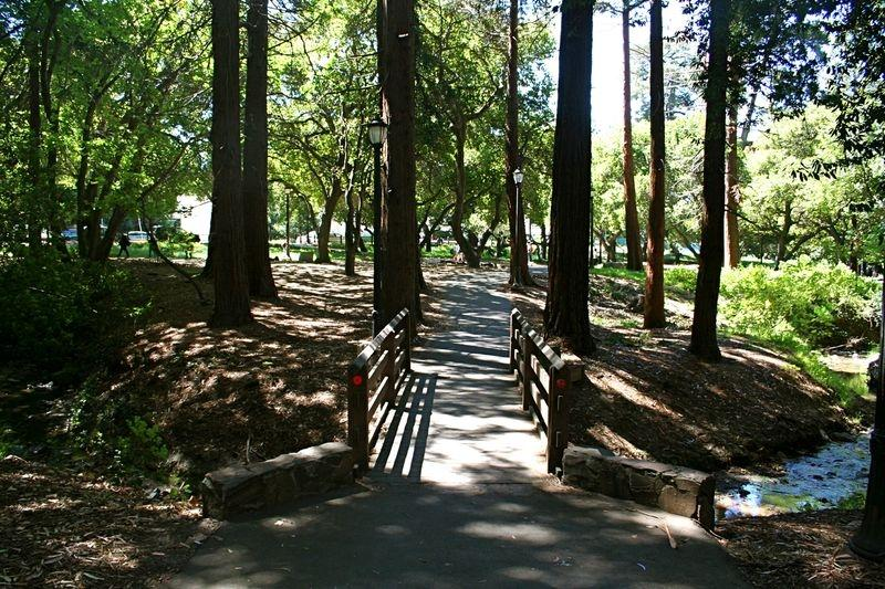Strawberry Creek, UC Berkeley campus