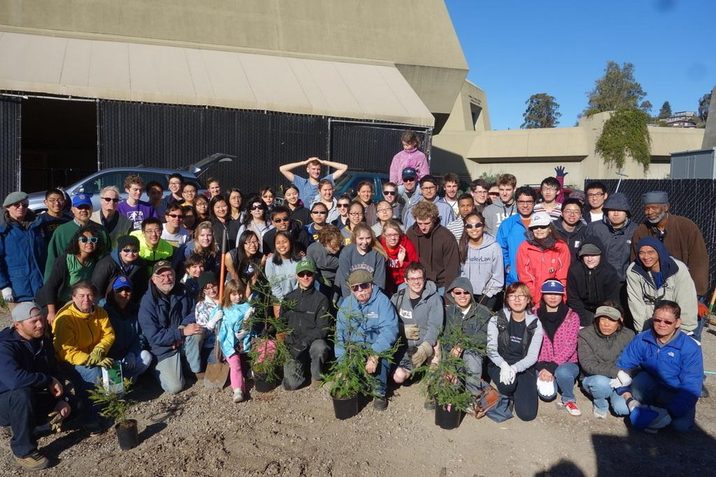 students with seedling trees
