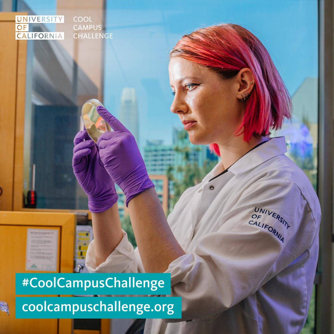 Cool Campus Challenge 2019 week 4 Instagram image