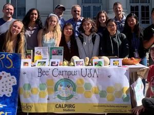 Bee Campus Tabling Image