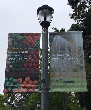 campus banners about sustainability